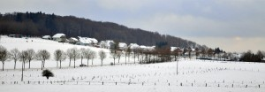 Ein winterliches Panorama von Schenkelberg